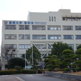 値 大学 日本 医科 偏差